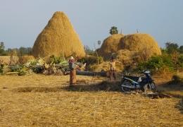 cheung kok village kampung cham