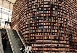 Libreria-Starfield