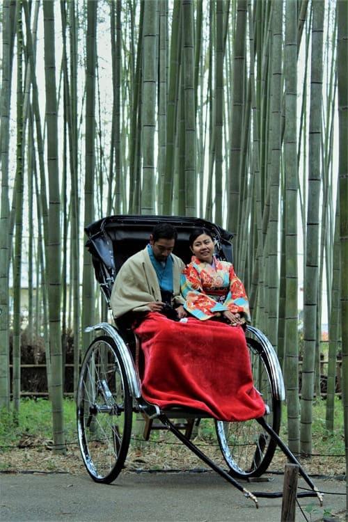 Bosque-de-bambú-de-Arashiyama-en-Kioto