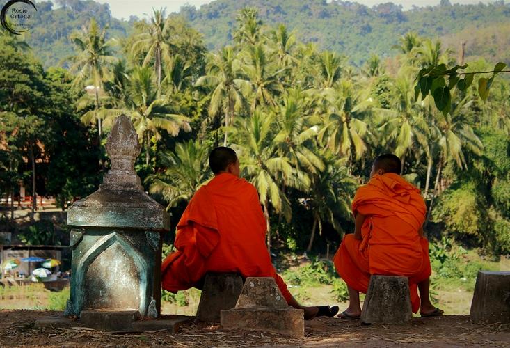 Monjes budistas charlando en Luang Prabang