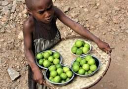 Niño-vendiendo-limones