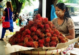 vendedora de rambutan en yangon myanmar