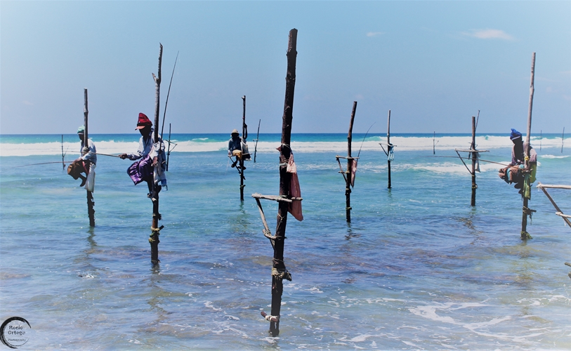 Pescadores peculiares Sri Lanka