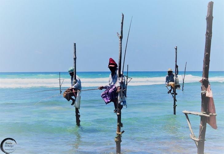 Pescadores Sri Lanka