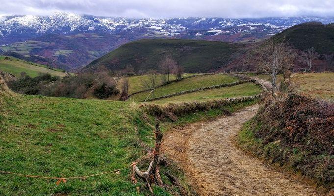 Camino de Santiago. Flickr jmgarzo