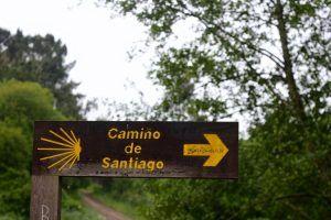 Camino de Santiago por Trevor Huxham