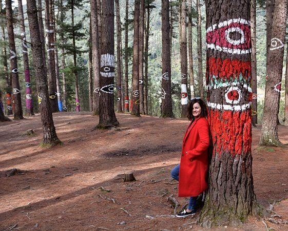 Rincones de España: el Bosque de Oma