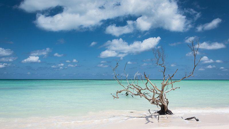 Playas paradisíacas de Cuba: Cayo Jutías por kuhnmi