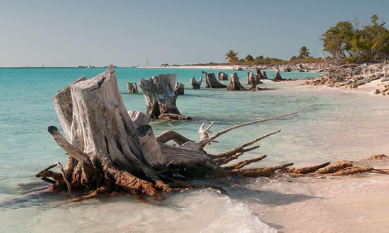 Playas paradisíacas de Cuba: Cayo Largo del Sur por Alessandro Caproni